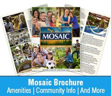 Mosaic Daytona Beach Homes Brochure