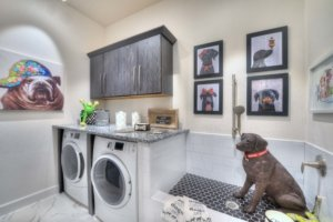 Pet friendly home design