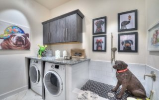 Pet friendly home design